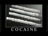 Cocaine - DJ pavo &amp Dj zany