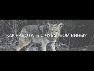 Как работать с чувством вины? 08.06.2017 Дмитрий Анохин