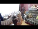 Как покрасить корни волос в домашних условиях