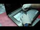 Ремонт ноутбука Не устанавливаются драйвера на видео карту ошибка 43