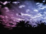 Elfsong &amp Aeron Aether - Sylleptica