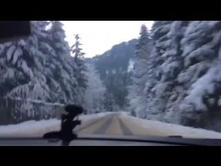 Дорога до дому