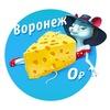 Бесплатный Воронеж