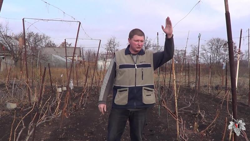 Закладка нового виноградника. Выбор типа шпалеры. (2015)