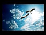 Парить так высоко я не умела Звегинцева Инна - Красивая музыка для души, христианская музыка