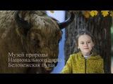 Музей природы Национального парка Беловежская пуща. Влог. Путешествие.