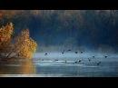 Осенняя охота на утку. Охота в Якутии.