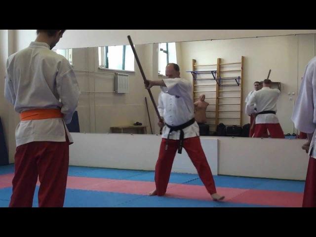 Таинг банши. Семинар по технике с длинной палкой.