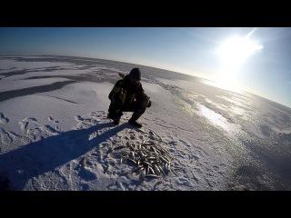 Лучшая рыбалка на Корюшку Финский залив , Северный берег