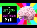 The left brain vs. right brain myth - Elizabeth Waters
