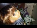 Благоухание сирени. Фанаты подарили королеве поп-музыки букет цветов!