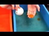 Как делают искусственные яйца из Китая видео