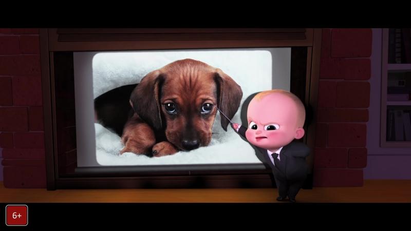 Босс молокосос / Boss Baby