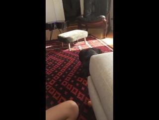 Stacey Macdonald - Snapchat