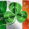 Дни Ирландии в Тимирязевке