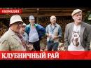 Клубничный рай Русская комедия