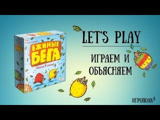 Ежиные бега — Let's Play (летсплей) партия в настольную игру