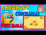 DIY Супер Лабиринт для хомяка своими руками   Labyrinth for a hamster with your own hands