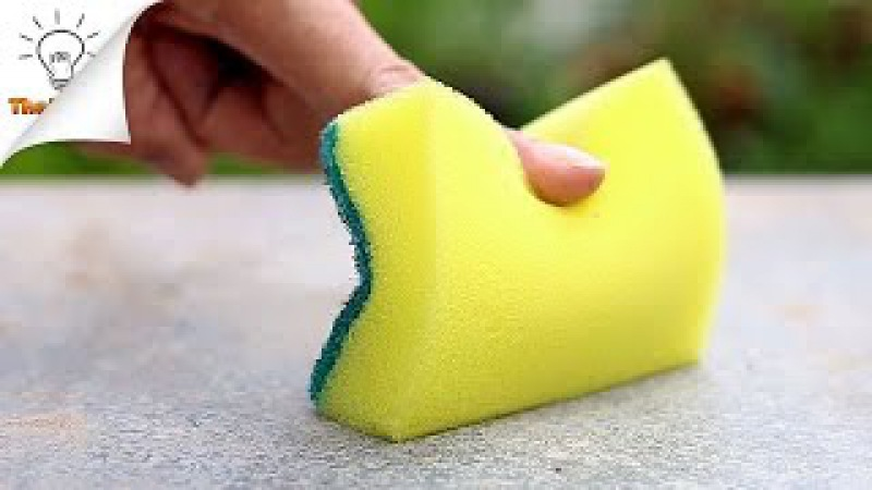 15 Sponge Life Hacks You Should Know