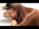 Как избавиться от секущихся концов и не потерять длину волос Все буде добре Выпуск 866от23 08 16