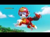 Щенячий патруль - воздушные спасатели (новый образ)