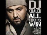 DJ Khaled  All I Do Is Win (feat. T-Pain, Ludacris, Rick Ross &amp Snoop Dogg)