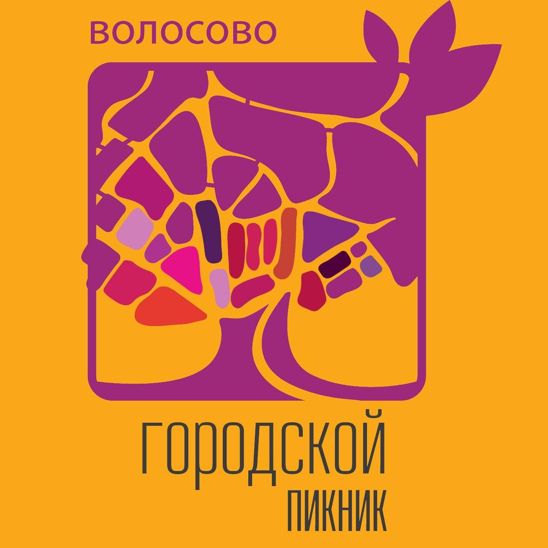 18.08 Городской Пикник Волосово!