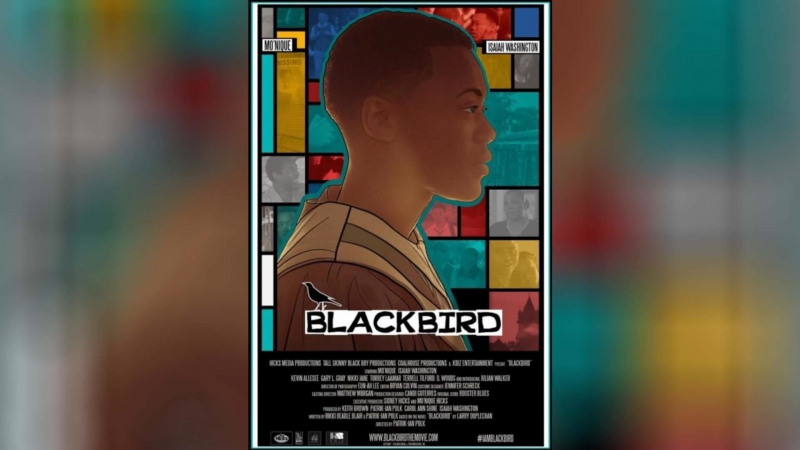 Чёрный дрозд (2012) | Blackbird