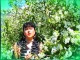 МОЛДАВАНСКИЕ СТЕПИ-старинная народная песня молдавских цыган-видеозапись 1986 год-ОЛЬГА АГУЛОВА