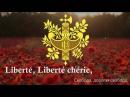 Гимн В.Р.И.! (Подло украдено у Франции)