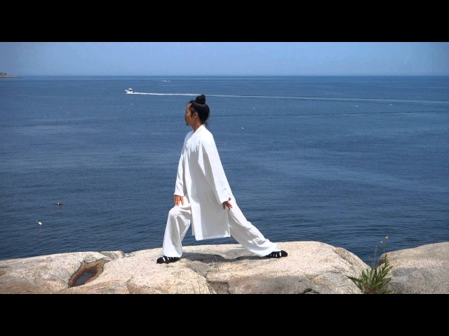 Eight Pieces of Brocade BaDuanJin 八段锦 Qigong