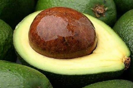 авокадо Fuente