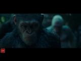 Планета обезьян война русский трейлер 2017