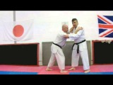 Bassai Dai Bunkai Strategies Newsletter week 32 koryu oyo jutsu