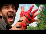 Coyote Peterson and his PAIN Койот Питерсон и его боль (Video Clip)