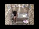 Девушку жестоко напугали в туалете!!!)))