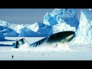 Всплытие подводной лодки Surfacing submarine