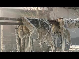 Теплотрассу на Северной Поляне изолируют современным материалом