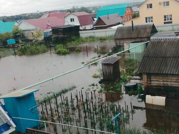 Фото из Ульяновска: горожане шокированы последствиями урагана