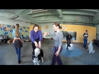 Видеозарисовки с семинара по фристайлу (г. Кемерово)