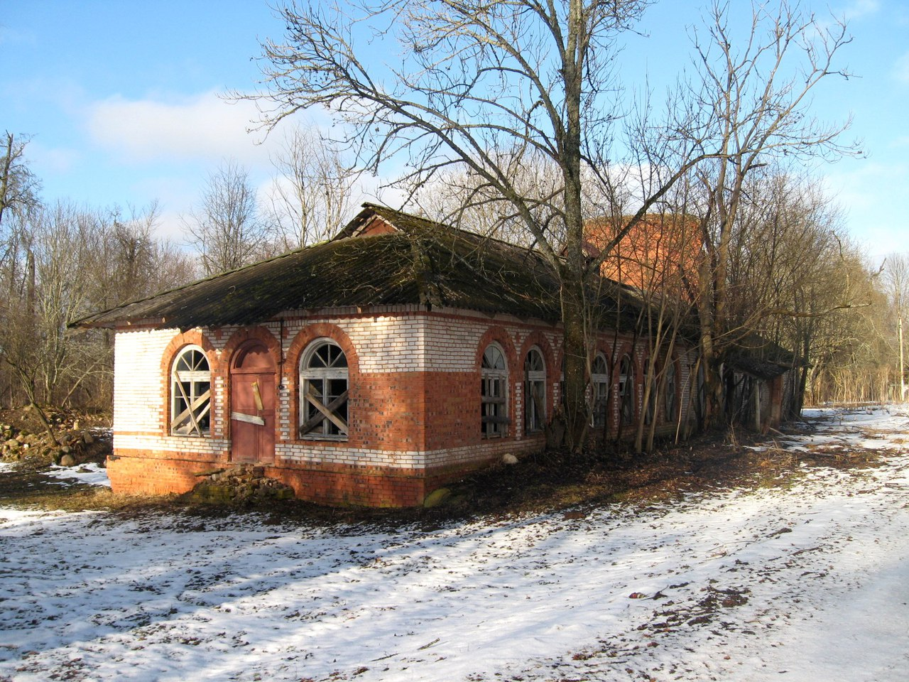 Manor Nadbelya. Luga district, Leningrad region. manors, here, very, remains, brick, wall, ancient, such, sometimes, boulders, manor, representative, built, good, something, contagious, everything, Now, climbed, others