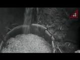 2016.11.26 Голод 32-33-го років - Петрушин (Дитинець)