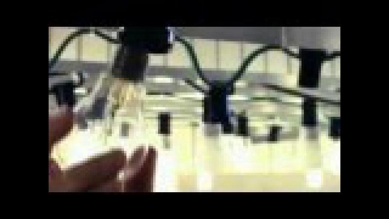 Deutschland 2012 - Wir alle werden wissentlich (TOT)KRANK gemacht, VERGIFTET! Energiesparlampen...