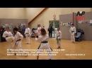 Sokół Mielec karate i szachy
