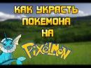 Как украсть покемона на Pixelmon SideMC Перезалив