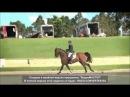 гимн конного спорта