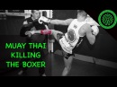 Muay Thai Killing the Boxer Tutorial