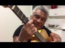 Gipsy kings Nicolas Reyes cantando gitana gitana de Manzanita 2017