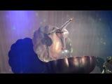 2017.03.11 Москва.Шоу Человек-амфибия. Акробатка на жемчужине
