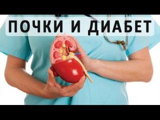 Диабет и почки. Поражение почек при сахарном диабете и его лечение